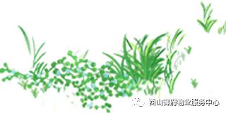 西山御府物业服务中心工作简报
