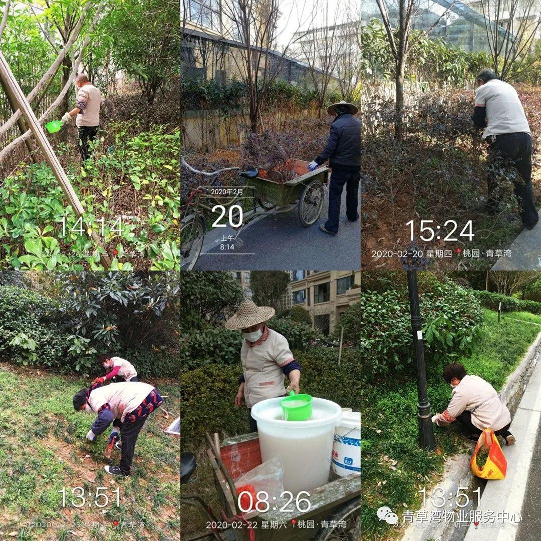 青草物业服务中心物业中心工作简报(2020年2月)