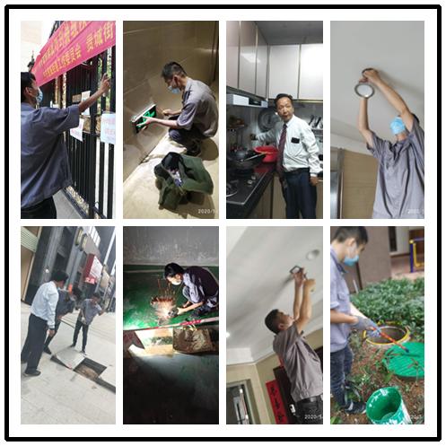 凯旋国际物业服务中心简报(2020年5月)