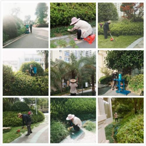 青草湾物业服务中心工作简报(2020年6月)